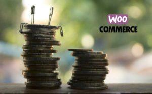 Cuánto vale una tienda online en WooCommerce
